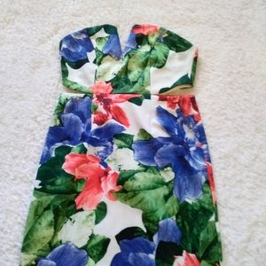 Beautiful and Sexy Strapless Floral Print Dress